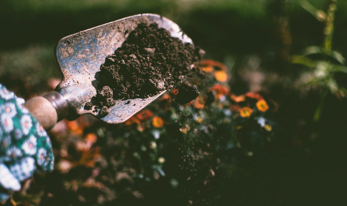 Plant a Garden with the Environmental Health Investigators!