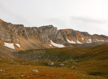 Vegetation in the Tundra: How do Plants Live in the Cold?