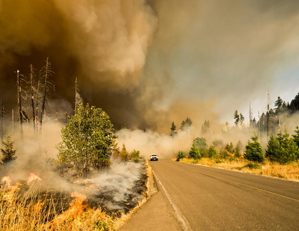 Wildfires and Particulate Matter – A Major Environmental Impact on Our Health